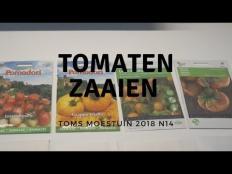 TM18#14 : Tomaten zaaien, kool uitdunnen en stevia verspenen