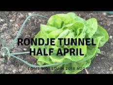 TM18#20 : Een rondje in mijn moestuin tunnel serre