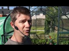 Toms Moestuin 2016 # 29 : Augurken planten en aardappelen in potten